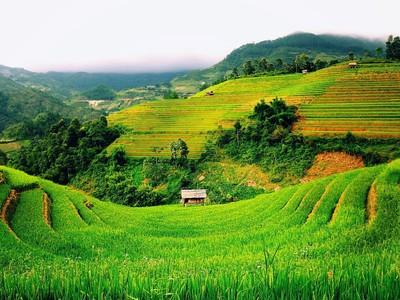 Thị trường tài chính 24h: Xuất hiện điều kỳ lạ trên thị trường chứng khoán Việt Nam