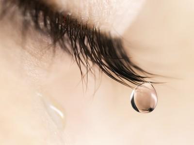 Nhiều lần khóe mắt cay cay...
