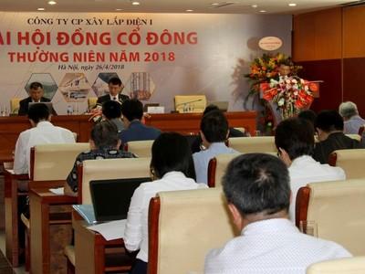 Đại hội đồng cổ đông PCC1: Tiếp tục tăng vốn