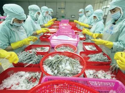 Môi trường kinh doanh Việt Nam: Cần sức nóng cải cách lan rộng