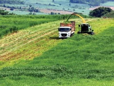 Nhiều chính sách khuyến khích đầu tư vào nông nghiệp