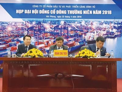 Cảng Đình Vũ (DVP) đặt kế hoạch lãi trước thuế 260 tỷ đồng