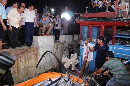 Thủ tướng Nguyễn Xuân Phúc bày tỏ vui mừng khu chứng kiến con cá nghéo đại dương nặng 150kg của ngư dân Quảng Trị. Ảnh:Hoàng Táo