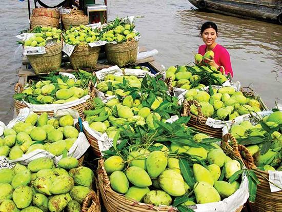 Bộ Nông nghiệp Mỹ cấp phép nhập khẩu trái xoài tươi từ Việt Nam