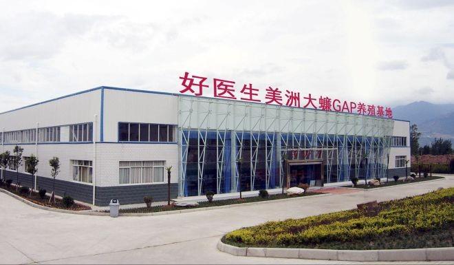 Trang trại nuôi gián lớn nhất thế giới ở Trung Quốc