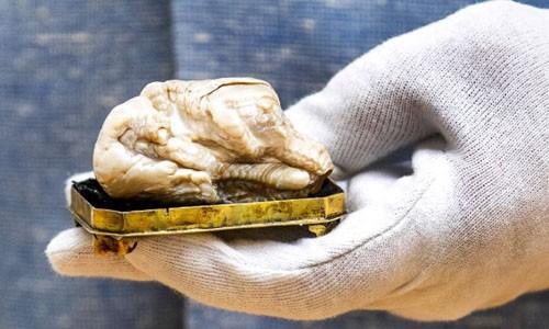 Khối ngọc trai nước ngọt lớn nhất thế giới được bán với giá 374.000 USD
