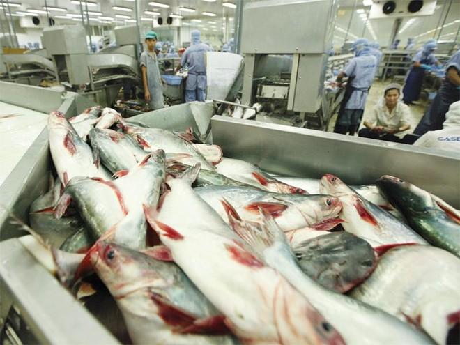 Trận đánh FTA và thế cờ cho doanh nghiệp Việt (bài 1): Vòng xoáy phòng vệ thương mại