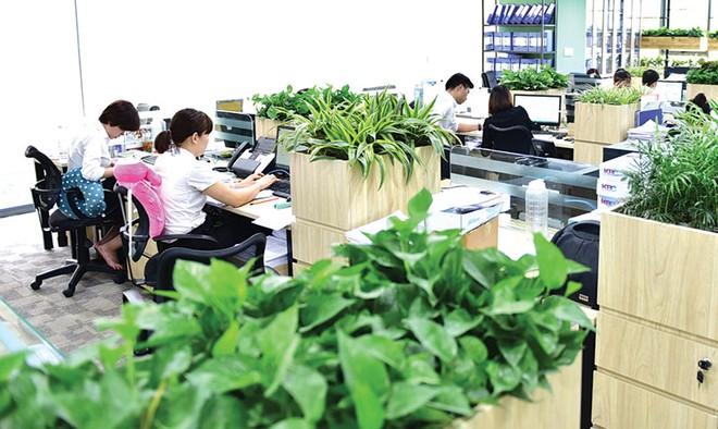 Tối ưu hóa hiệu quả hoạt động của nhân viên bằng văn phòng xanh
