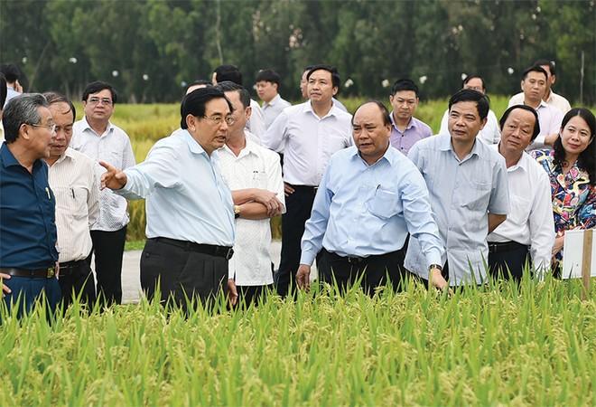 """Hợp sức đưa con tàu kinh tế về đích tăng trưởng (Kỳ 3): Công nghệ cao đưa nông nghiệp Việt """"cất cánh"""""""
