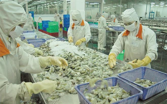DN làm gì để tận dụng cơ hội từ FTA Việt Nam - EAEU?