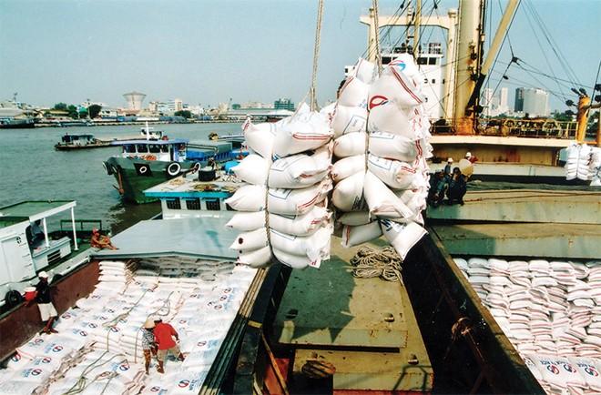 Hàng nông sản Việt Nam xuất khẩu luôn bị trả giá thấp hơn các nước khác
