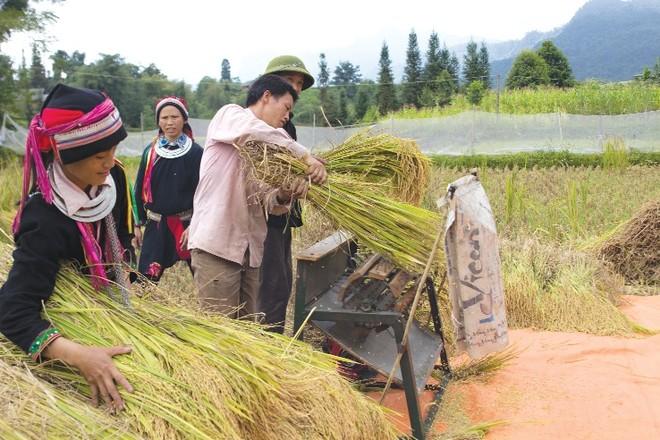 Tăng cường vai trò cộng đồng trong phát triển kinh tế - xã hội