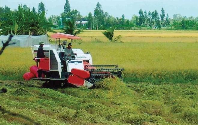 Đất đai là điểm nghẽn lớn nhất để thu hút đầu tư vào nông nghiệp