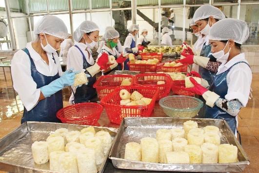 2016, kinh tế Việt Nam đối mặt với nhiều thách thức