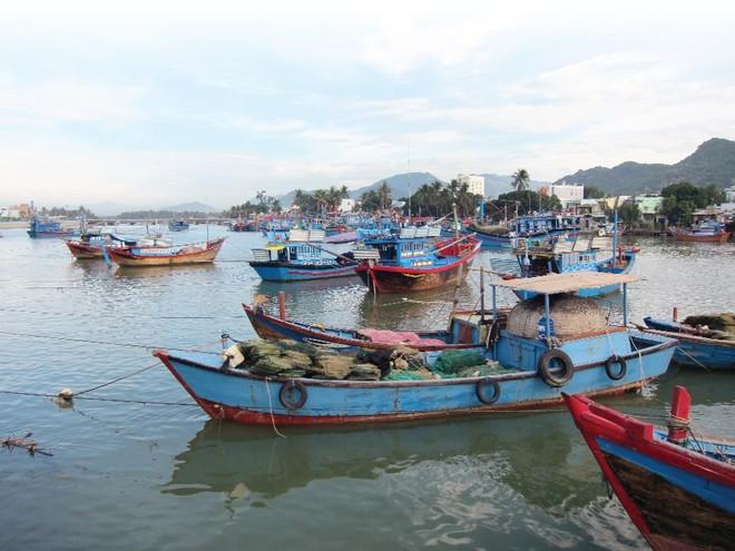 Bảo hiểm tàu cá, thách thức trước yêu cầu của Nghị định 67