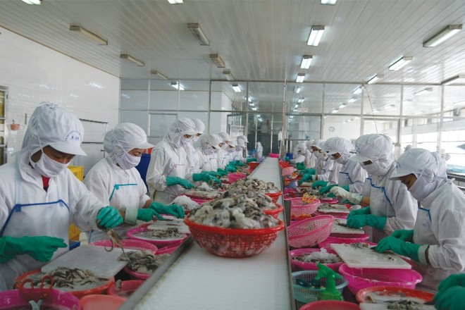 Những ngả đường hướng đích 2 triệu doanh nghiệp Việt - kỳ cuối
