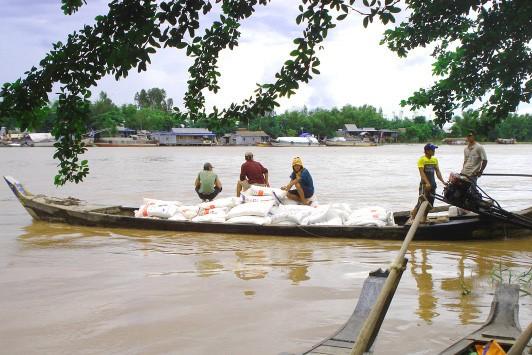 Hiệp hội Mía đường đề xuất cho lực lượng chống buôn lậu hưởng 100% lô hàng