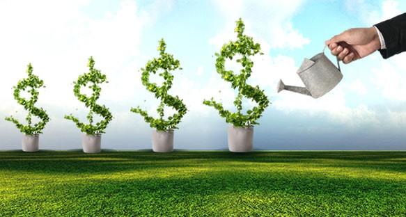 Quỹ lãi cao, Công ty Quản lý quỹ Vietcombank vẫn chưa thoát lỗ