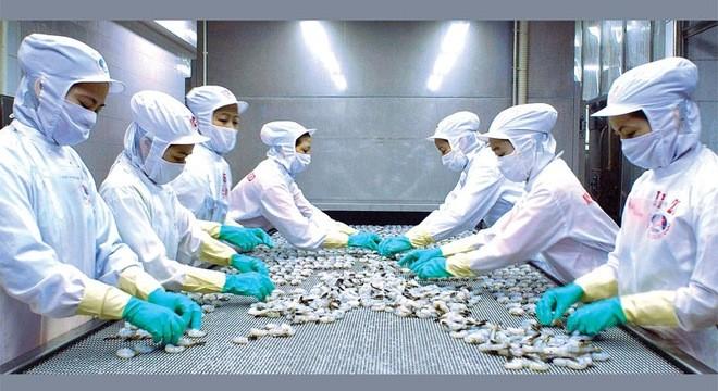 Minh Phú đặt mục tiêu kim ngạch xuất khẩu 687 triệu USD