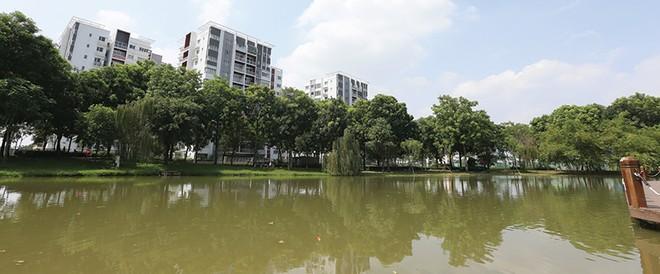 Đi tìm giá trị thật trên thị trường bất động sản