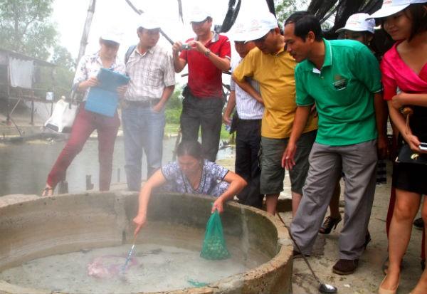 Hoa Sen đầu tư du lịch nghỉ dưỡng, chữa bệnh tại Bình Định