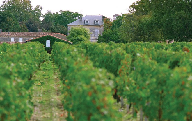 Bordeaux không chỉ hấp dẫn bởi rượu vang và bóng đá