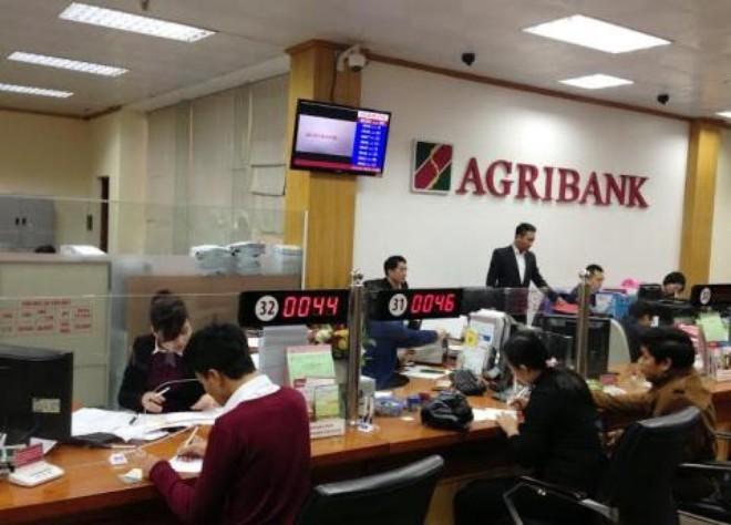Agribank: Dư nợ cho vay tại Đồng bằng sông Cửu Long chiếm 15% tổng dư nợ