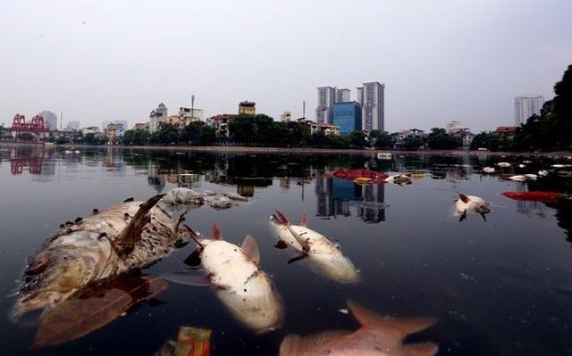 Hà Nội, nhiều khu dùng nước chưa đạt chuẩn mang tên... nước sạch