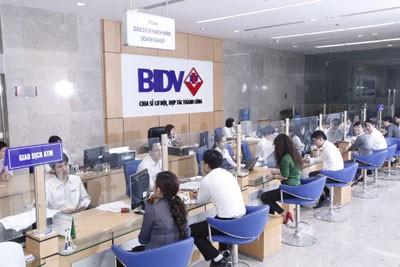 BIDV tài trợ tín dụng cho 7 dự án tại Thừa Thiên - Huế