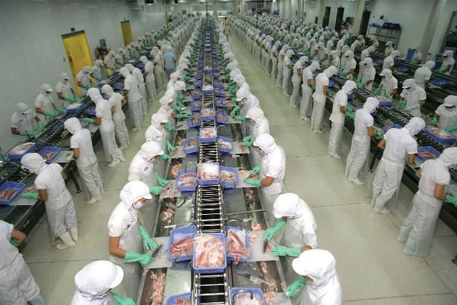 Doanh nghiệp xuất khẩu ít chịu tác động từ sự kiện Hanjin