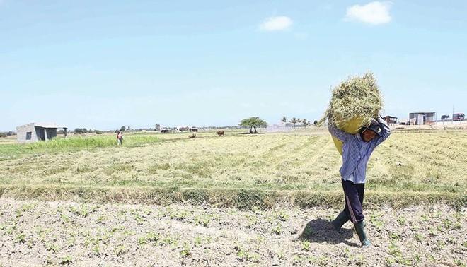Kinh tế Việt Nam, những thách thức trước mắt