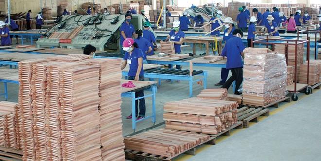 Doanh nghiệp ngành gỗ: Chờ luật mới để thoát khó
