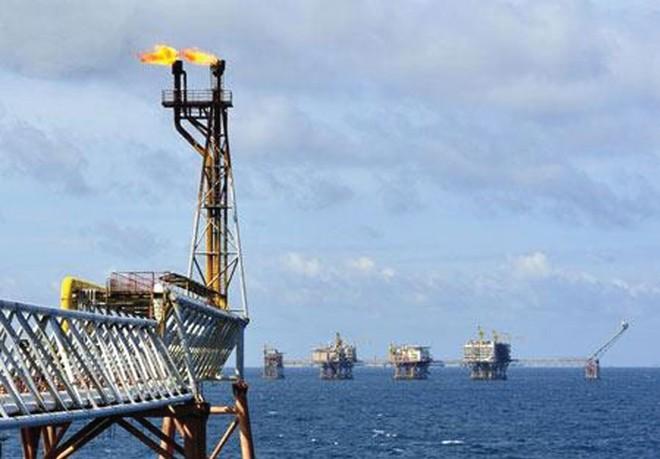 PetroVietnam vươn tới những thành công mới