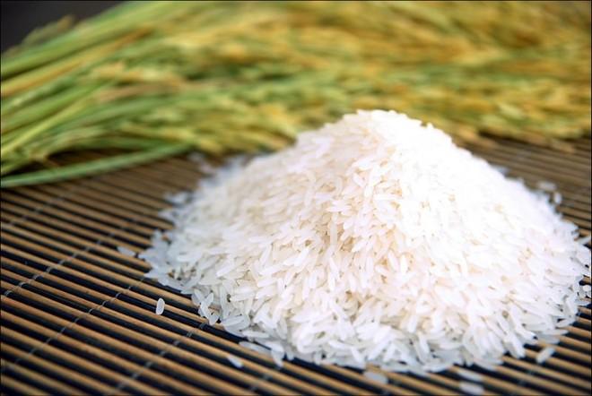 Xuất khẩu gạo Việt Nam gặp khó do phải cạnh tranh với gạo Thái Lan, Campuchia