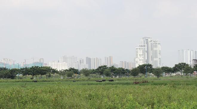 Điểm mặt những dự án sai phạm về đất đai tại TP.HCM