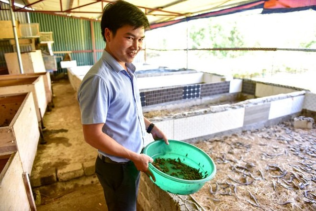 8X kiếm tiền tỷ mỗi năm nhờ nuôi bọ cạp, rắn mối ngay tại Hà Nội
