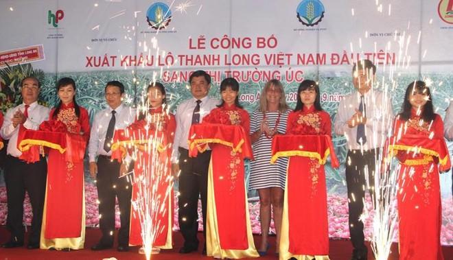 3 tấn thanh long đầu tiên của Việt Nam xuất đến Úc