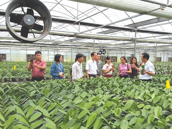 Hà Nam mong đón nhiều nhà đầu tư APEC