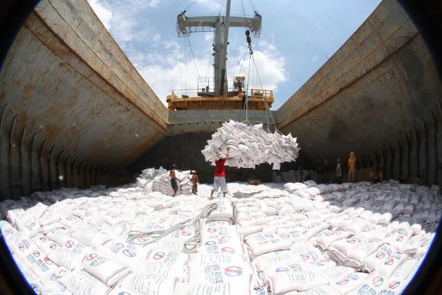 Bộ Kế hoạch và Đầu tư đề xuất bãi bỏ điều kiện kinh doanh xuất khẩu gạo