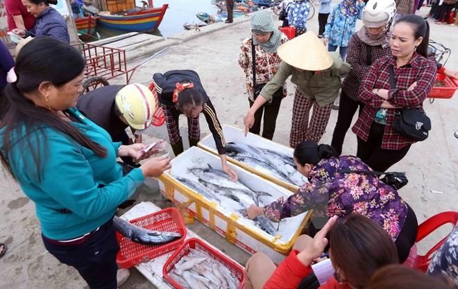 Phê duyệt giải pháp khắc phục 'thẻ vàng' của EU về khai thác thủy sản