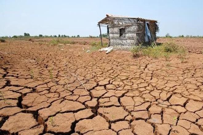 Hỗ trợ gần 485 tỷ đồng khắc phục hạn hán, xâm nhập mặn