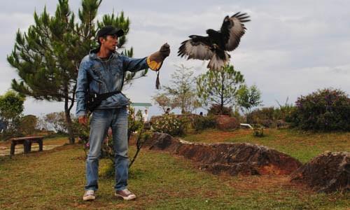 Kinh doanh 'chúa tể bầu trời' trên đỉnh LangBiang