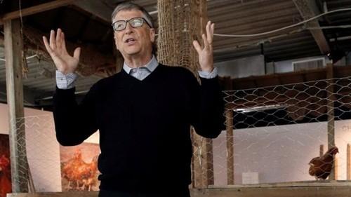 Bill Gates dạy làm giàu từ nuôi gà