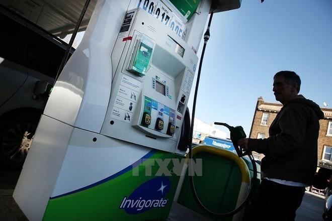 IEA tăng dự báo về nhu cầu dầu mỏ toàn cầu