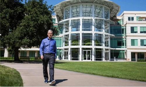 Tim Cook: 'CEO Apple là công việc rất cô đơn'