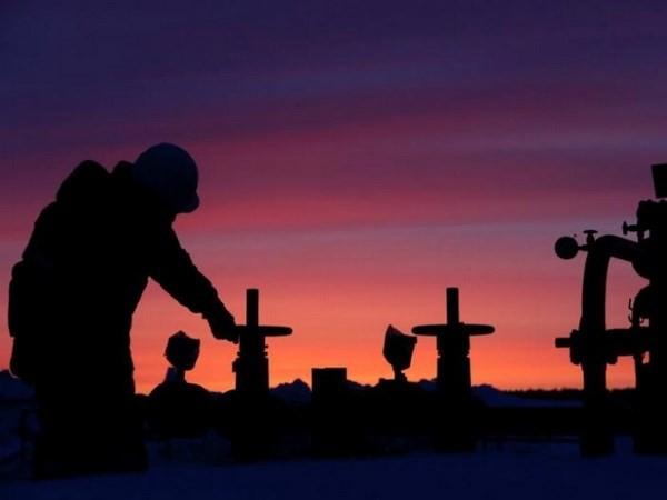 Nga cắt giảm sản lượng nhằm bình ổn thị trường dầu mỏ