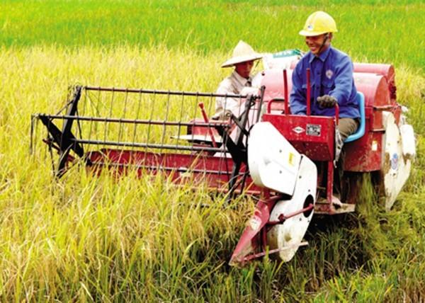 WB phê duyệt hai khoản tín dụng trị giá 315 triệu USD cho Việt Nam
