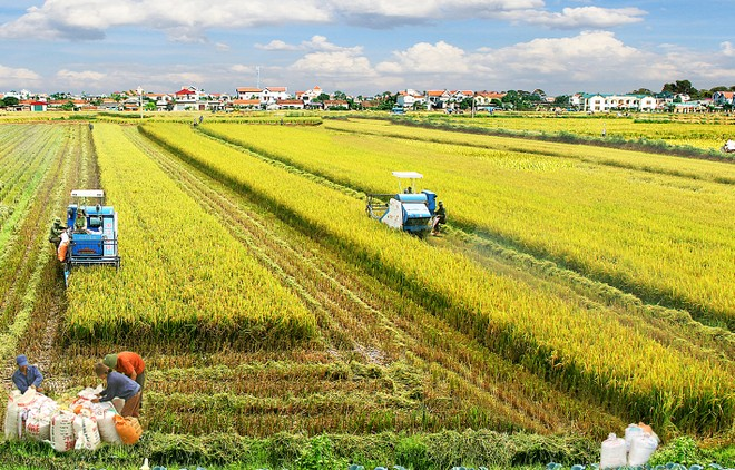 ADB đưa ra 3 trụ cốt giúp Việt Nam thúc đẩy tăng trưởng kinh tế bền vững