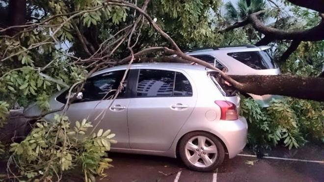 7 DN bảo hiểm: khoảng 250 ô tô hư hỏng sau giông lốc mạnh tại Hà Nội cuối tuần qua