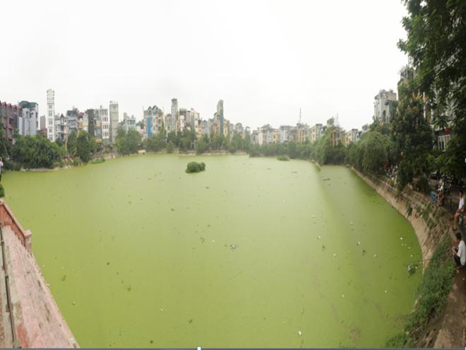 Xử phạt 1.650 tỷ đồng các vụ vi phạm tài nguyên, môi trường trong năm 2015